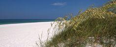 Perdido Key, Florida    A white sand, barrier island located between Gulf Shores, AL and Pensacola, FL.  Paradise!