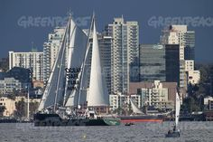 """""""The Rainbow Warrior passes near the historic iron-hulled Star of India sailing ship on arrival in the southern California port city. Rainbow Warrior, Southern California, Sailing Ships, San Francisco Skyline, New York Skyline, Around The Worlds, David, Ocean, Iron"""