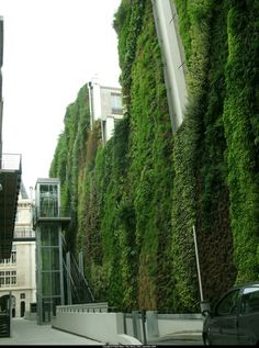 Rue d'Alsace in Paris greened by Patrick Blanc