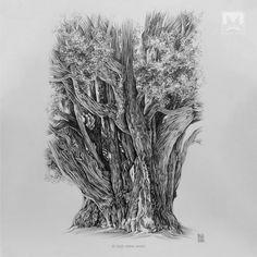 AFSHIN AMINI ART STUDIO | #AfshinAminiArt #PenAndInkDrawing #Sketchbook #Art #OldTree #Drawing #Sketching #PenDrawing #InkDrawing Ink Pen Drawings, Tree Drawings, Tree Illustration, Drawing Artist, Ink Art, Sketching, Image, Studio, Sketchbooks