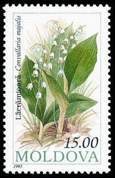 Stamp of Moldova 429.gif