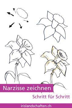 Pflanzen zeichnen schritt f r schritt 30 tage challenge - Gartengestaltung leicht gemacht ...