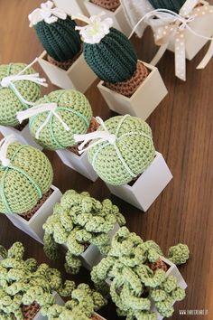 Bomboniere uncinetto piante grasse - dettaglio della confezione e del sottovaso. Crochet Cactus, Crochet Flowers, Amigurumi Patterns, Crochet Patterns, Free Crochet, Knit Crochet, Cactus E Suculentas, Educational Toys For Toddlers, Cacti And Succulents