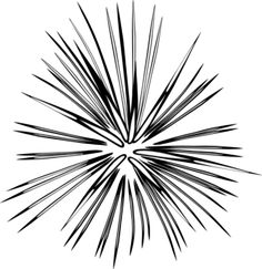 fireworks starburst line art - Google Search