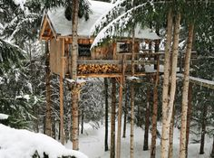 I'll just be up in ma treehouse