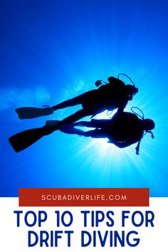 Drift diving can offer you some of the most exhilarating dives of your life, but before you begin, it's important to understand and master some of the techniques for diving in currents. #driftdiving #driftdivingtips #scubadiving #diving #scubadivingtips #scubadivingdriftdiving #divingtips Scuba Diving Certification, Technical Diving, Best Scuba Diving, Marine Conservation, Get Excited, Underwater, Saving Money, Birthdays, Articles