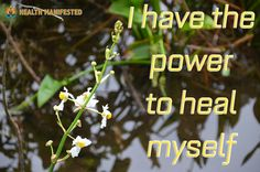 I have the power to heal myself - Health Manifested  #healthmanifested #power2heal #healingpower #health  #healthyhappylife #wellnessjourney #nourishyourself #fitforme #justbreathe #lookwithin #inspirationdaily #Mindset #Success #Inspire #ThinkBig #Believe #Motivate #instamotivation #life #LOA #lawofattraction #power #motivation #inspiration #quotes #dreams #morningmotivation #hope #havemotivation #onlymotivation #IAm #raiseyourvibrations #mindbodyspirit #mindbodysoul