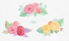 Summer Roses Watercolor Pack by Watercolor Nomads on Creative Market