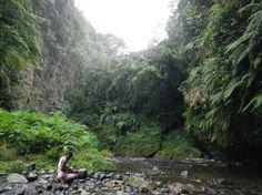 Millenium Cave - Espiritu Santo, Vanuatu