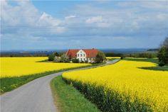 Ride a bike in Aeroskobing, Denmark