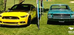 500 Mustangs Run Wild at 2014 Fleetwood Country Cruize-In