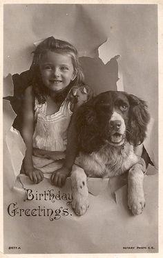 Vintage Dog Greetings