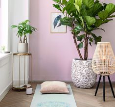 Bad, Oriental, Sweet Home, New Homes, House Design, Living Room, Plants, Inspiration, Balcony