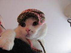 Fight Like A Girl Pink Camo Pet Hat for Cats and dogs Hand Crochet   DefiantCreations - Pets on ArtFire