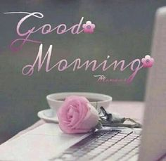 Good morning miss ditto! I hope you slept well and are having an amazing morning! Good Morning Coffee, Good Morning Gif, Good Morning Picture, Good Morning Friends, Good Morning Messages, Good Morning Wishes, Good Morning Quotes, Morning Sayings, Funny Morning