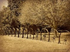 Using wheels as fences. To use as a small garden fence :) Log Fence, Fence Gate, Southern Belle Secrets, Outdoor Fun, Outdoor Decor, Outside Living, Garden Gates, Farm Life, The Great Outdoors