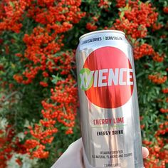 Enjoy your holiday weekend everybody! #XYIENCE #christmas #holidays