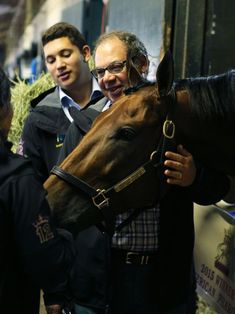 First mare reported in foal to American Pharoah #AmericanPharoah... #AmericanPharoah: First mare reported in foal to… #AmericanPharoah