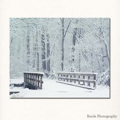 Winter Woods with Bridge Photograph 8x10 Fine Art  by Briole, $30.00