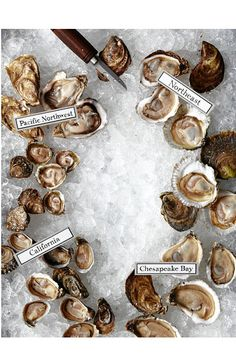 Oysters from the Pacific Northwest, the Northeast, the Chesapeake Bay, and California.