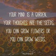 You can grow flowers❤️☀️