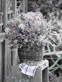 Color splash Splash Photography, Color Photography, Love Flowers, White Flowers, One Color, Color Pop, Color Splash, Splish Splash, Nature Paintings