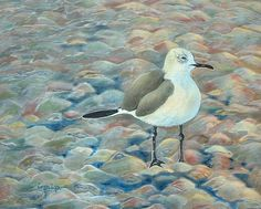 Seagull at the Shore Original Bird Painting by FreelyExpressed