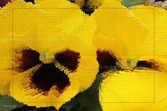 Cube Flower XIII by Rosemarie Hofer