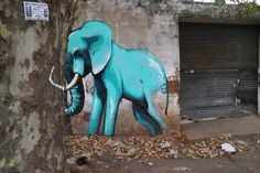 The elephant mural series Once Upon a Town by South African graffiti artist Falko One Elephant Images, Elephant Art, Mural Painting, Mural Art, Street Art, South African Artists, Colossal Art, Illustrations, Sculpture