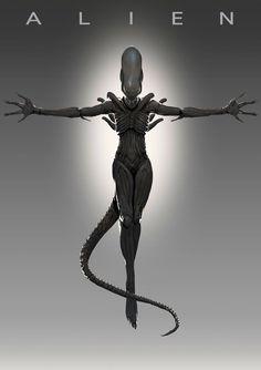 The Protomorph : Photo