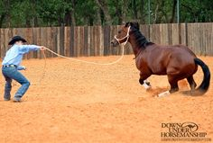 Lunging for Respect: A staple exercise