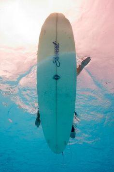 Despite my big fear of sharks, i really wanna go surfing!!