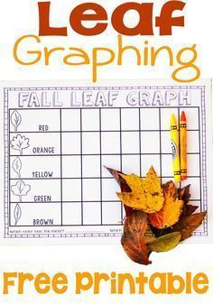 Fall Leaf Graphing Activity and Printable Free Fall Leaf Graphing! Fun kindergarten or preschool math center. Fall Leaf Graphing Activity and Printable Free Fall Leaf Graphing! Fun kindergarten or preschool math center. Fall Preschool Activities, Graphing Activities, Kindergarten Science, Preschool Lessons, Preschool Learning, Montessori Preschool, Montessori Elementary, Thanksgiving Activities, Math Lessons