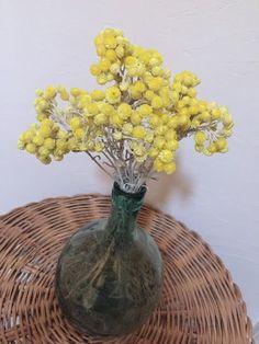 Immortelles Jaunes du Var Boutique, Decoration, Flower Power, Glass Vase, Creations, Flowers, Plants, Shop, Home Decor
