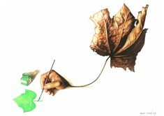 Agim Sulaj - Green Economy