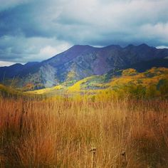 Red grass and golden trees under stormy skies.  One leftover from the end of September... Love this time of year!  #fall #fallcolors #crestedbutte