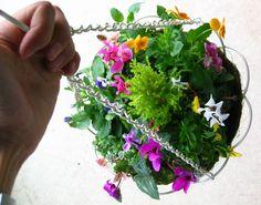 winter hanging basket arrangements - Google Search Winter Hanging Baskets, Herbs, Google Search, Garden, Garten, Gardening, Outdoor, Home Landscaping, Tuin