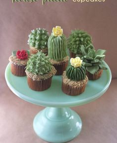 DIY: House Plant Cupcakes – Alana Jones-Mann