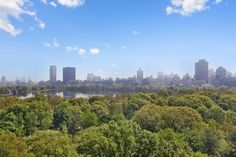 An iconic example of urban planning, #centralpark is a focus of #NYC's most coveted views #tbt #nychistory #centralpark #urbanplanning