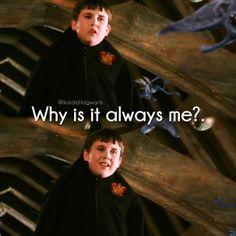 Harry Potter & The Chamber Of Secrets Phoenix Harry Potter, Harry Potter Fandom, Harry Potter Characters, Neville Longbottom, Anna And The French Kiss, Matthew Lewis, The Best Series Ever, Yer A Wizard Harry, Chamber Of Secrets