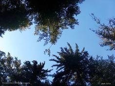 ein Ausflug zum Druidenhain, Fränkische Schweiz, Bayern, Deutschland