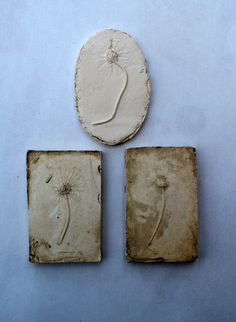 Plaster casts taken from impressions of Daisy's in clay