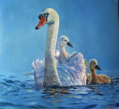Swan - oil on canvas (sold)