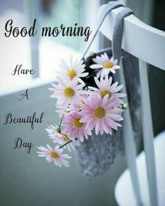 Good Morning Tuesday, Good Morning Cards, Good Morning My Friend, Good Night Gif, Good Morning Flowers, Good Morning Photos, Good Morning Greetings, Good Morning Good Night, Morning Pictures