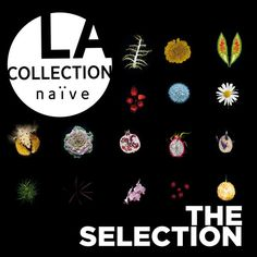 collection naïve : The Selection
