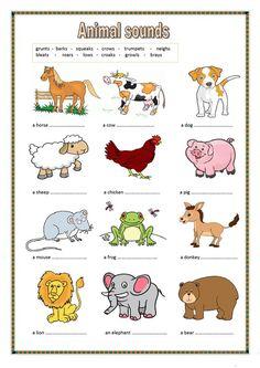pin by julie toporek on ot animals farm animals list animal worksheets. Black Bedroom Furniture Sets. Home Design Ideas