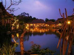 Sapulidi Sawah Cafe, Resort & Gallery - Tripcanvas