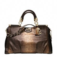 Madison flagship embossed python purse by Coach.  Probably the only snake I ever want to touch!