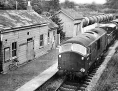 Electric Locomotive, Diesel Locomotive, Disused Stations, Devon And Cornwall, British Rail, Buses, Trains, Westerns, Scale