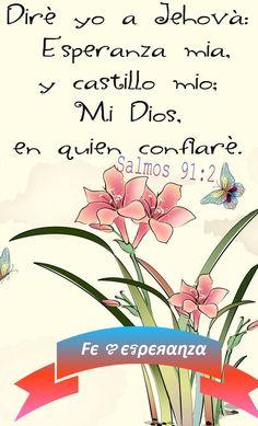 Diré yo a Jehová: Esperanza mía, y castillo mío; Mi Dios, en quien confiaré. Salmos 91:2